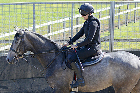 Ruth in the lunge ring